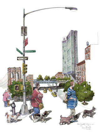 Illustration of Dog walkers in New York City