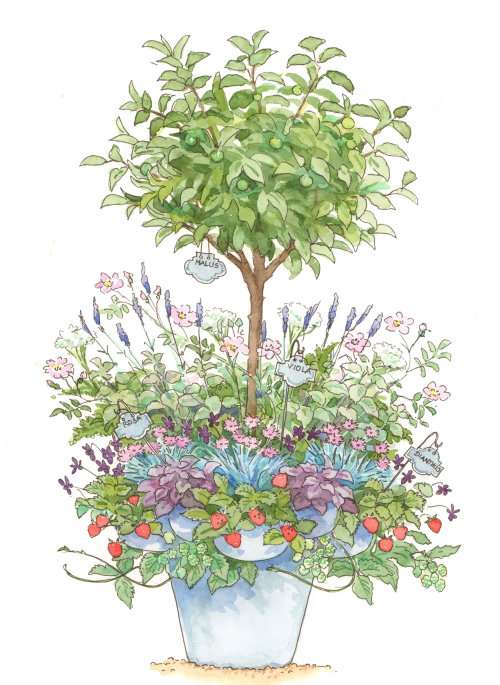 Watercolor painting of flower pot