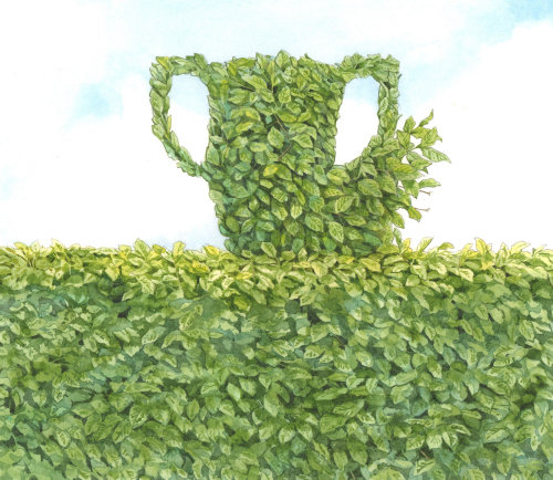 Nature jug illustration