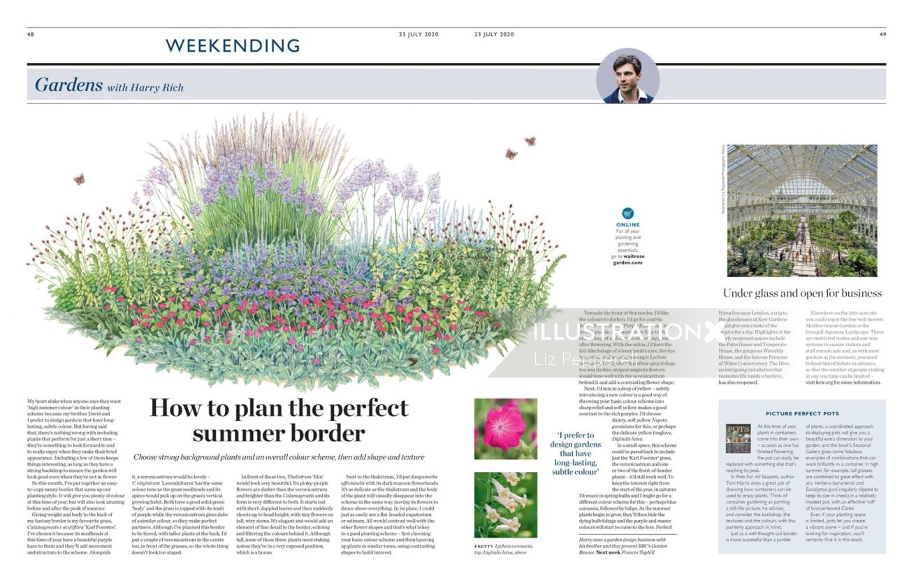 Editorial illustration of garden with Harry Rich