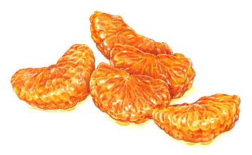 Food illustration of clementine slice