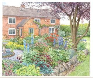 Botanical garden illustration by Liz Pepperell