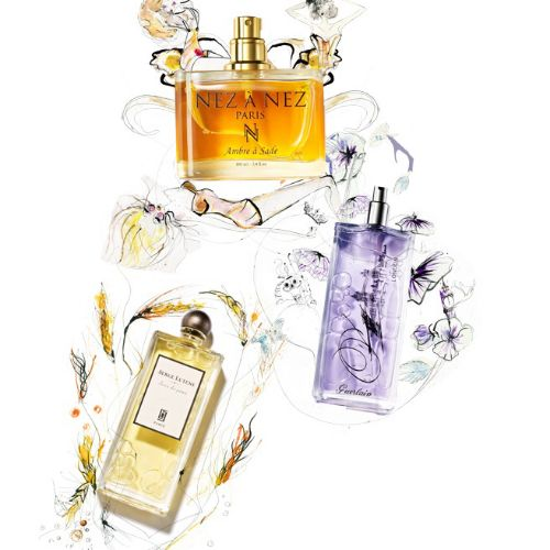 Fragrance botlle illustration by Lucia Emanuela Curzi