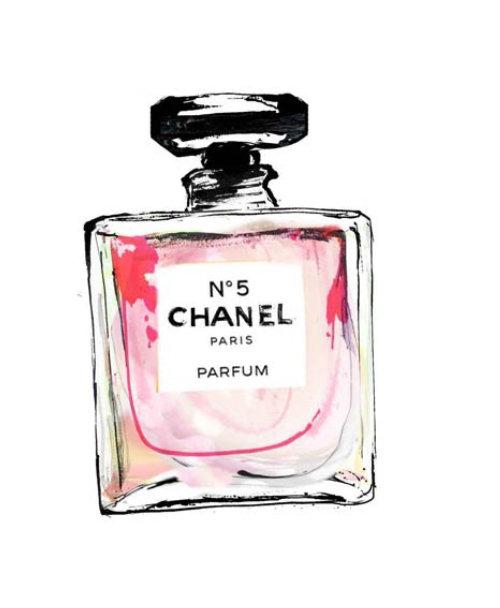 Fragrance bottle illustration by Lucia Emanuela Curzi
