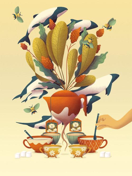 Illustrada Festival