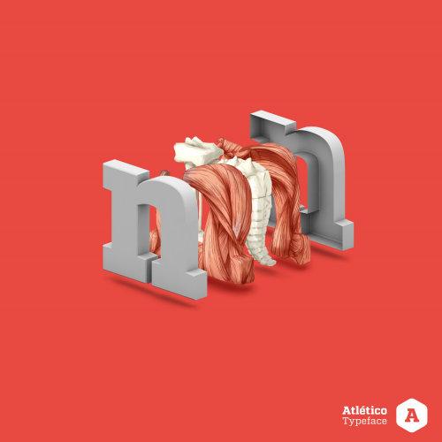 medical spine illustration N
