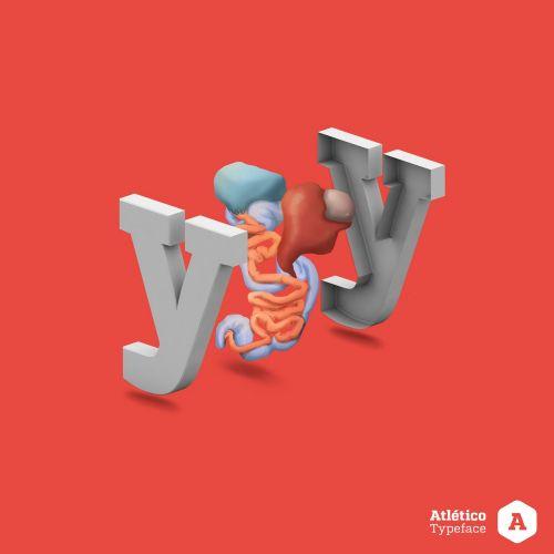 3d letter illustration Y with digestive system