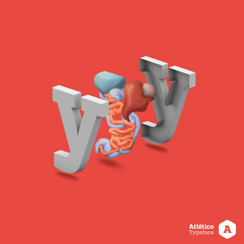 3d letter illustration Y with digestive system