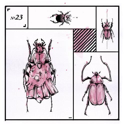 Animal loose illustration of bug