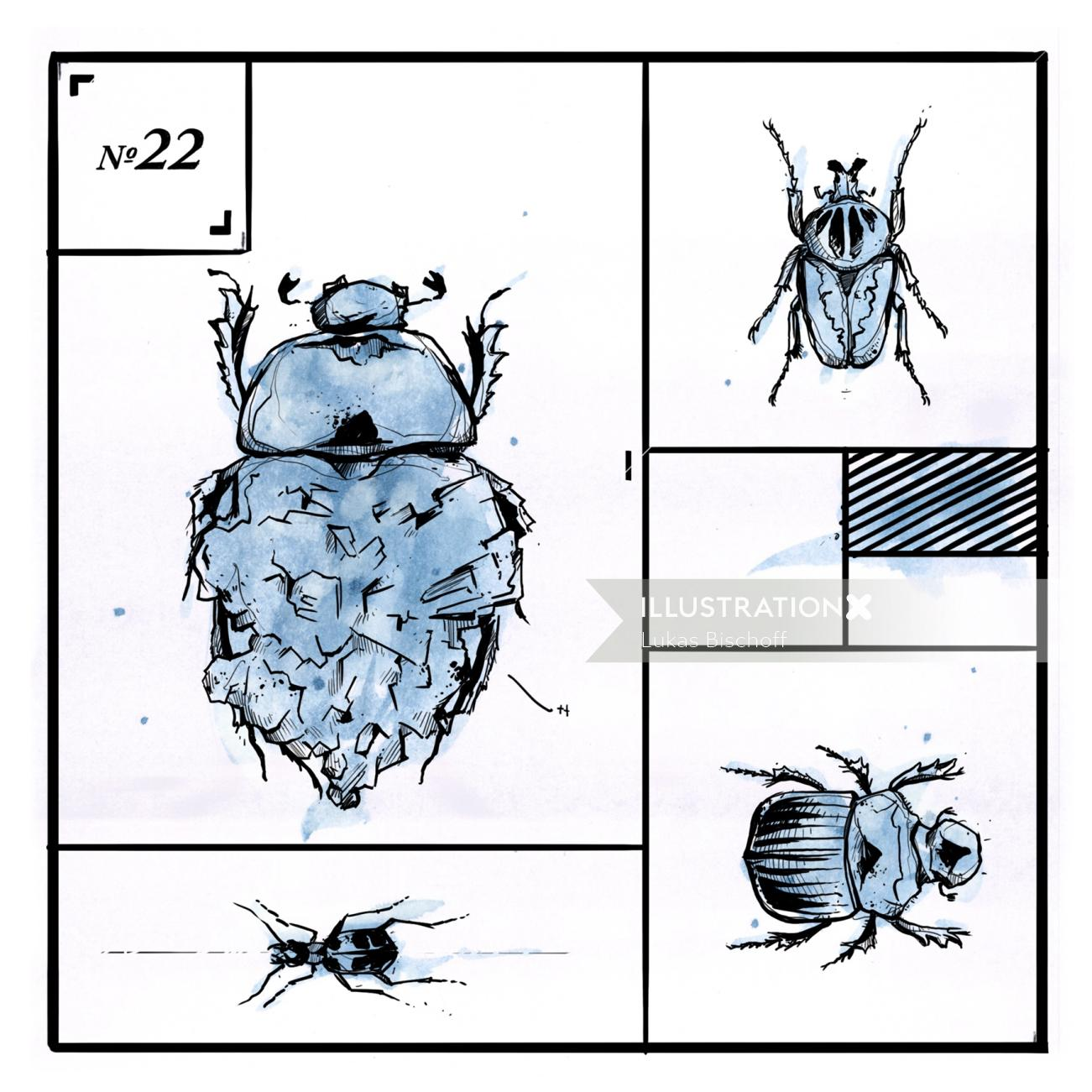 Loose animal illustration of bug
