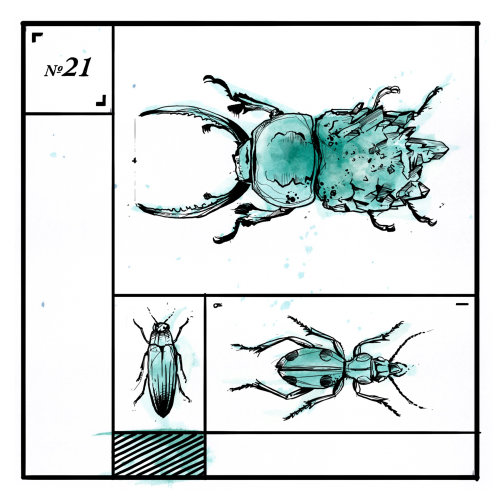 infographic loose illustration of bug