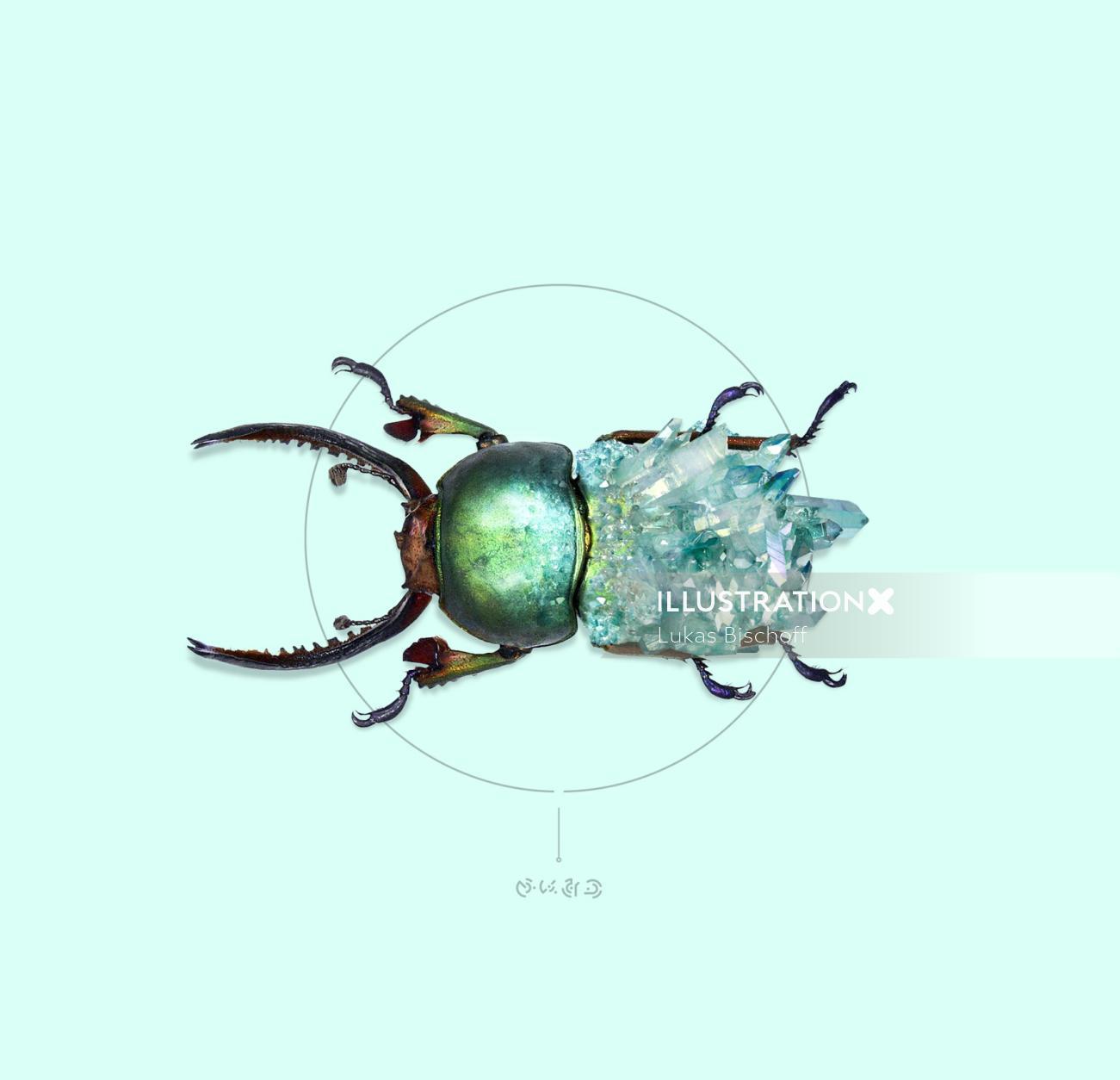 Animal illustration green bug