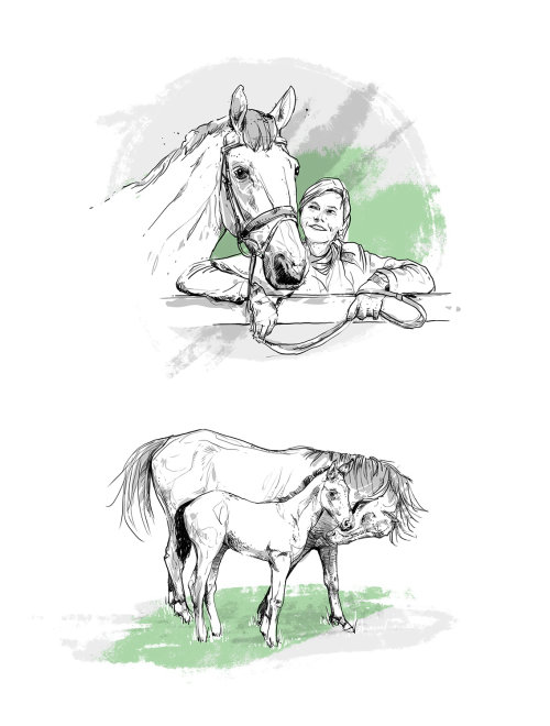 black and white line illustration of horse and woman