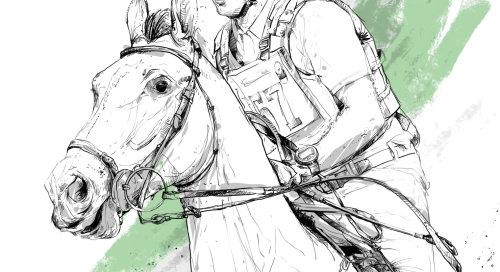 Horse black and white portrait