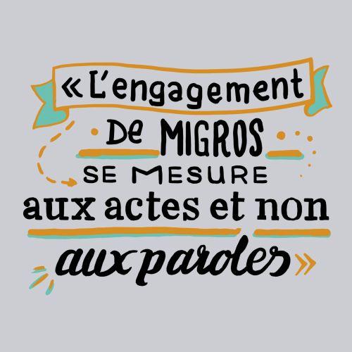Infographi lettering illustrtion