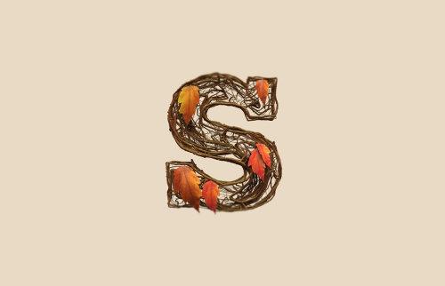 Letterting of letter S