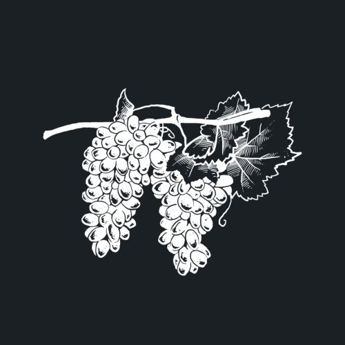 Food & Drink Grapes