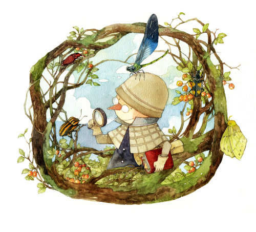 children boy searching bugs