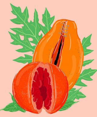 The Vagina Whisperer illustration