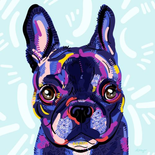 portrait illustration of Dog by Mallory Heyer