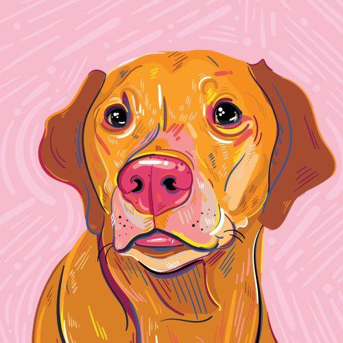 Mallory Heyer Audaz, colorido, retrato digital e ilustrador de estilo de vida. NOSOTROS