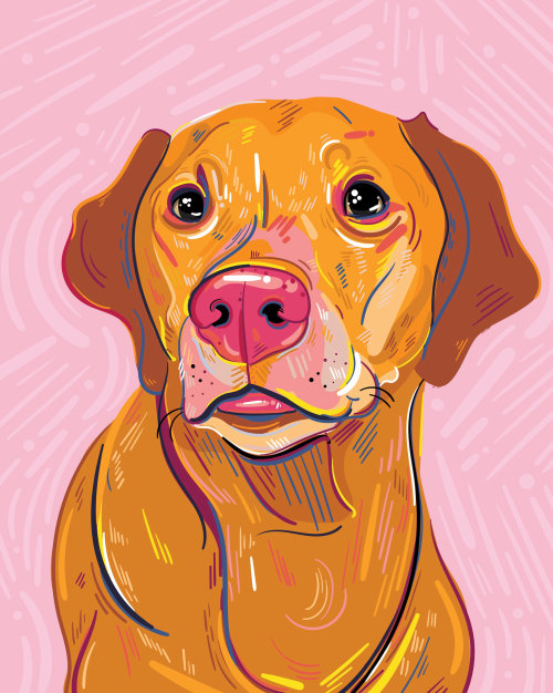 Digital portrait of dog