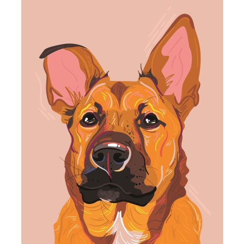 Mallory Heyer Bold, colourful, digital portrait and lifestyle illustrator. US