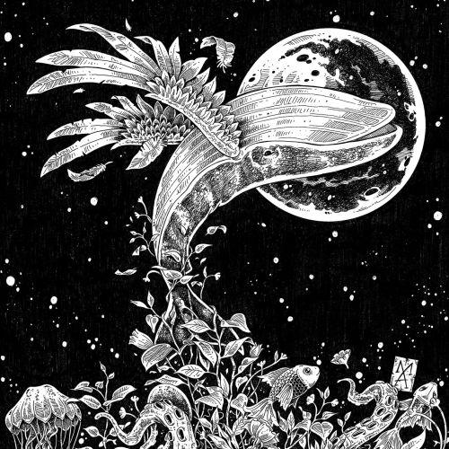 Marcelo Anache Decorative Illustrator from Brazil