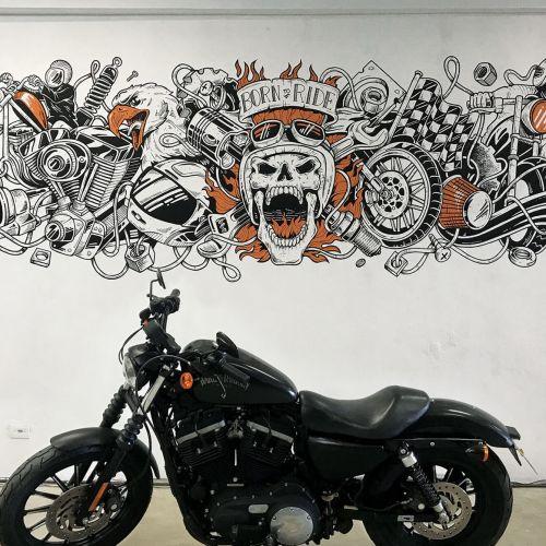 Marcelo Anache Street Art & Mural Illustrator from Brazil
