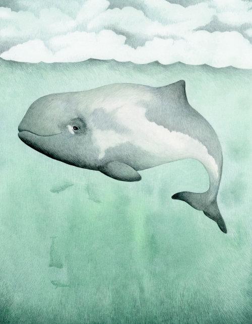 Ilustração de guache de toninha no mar