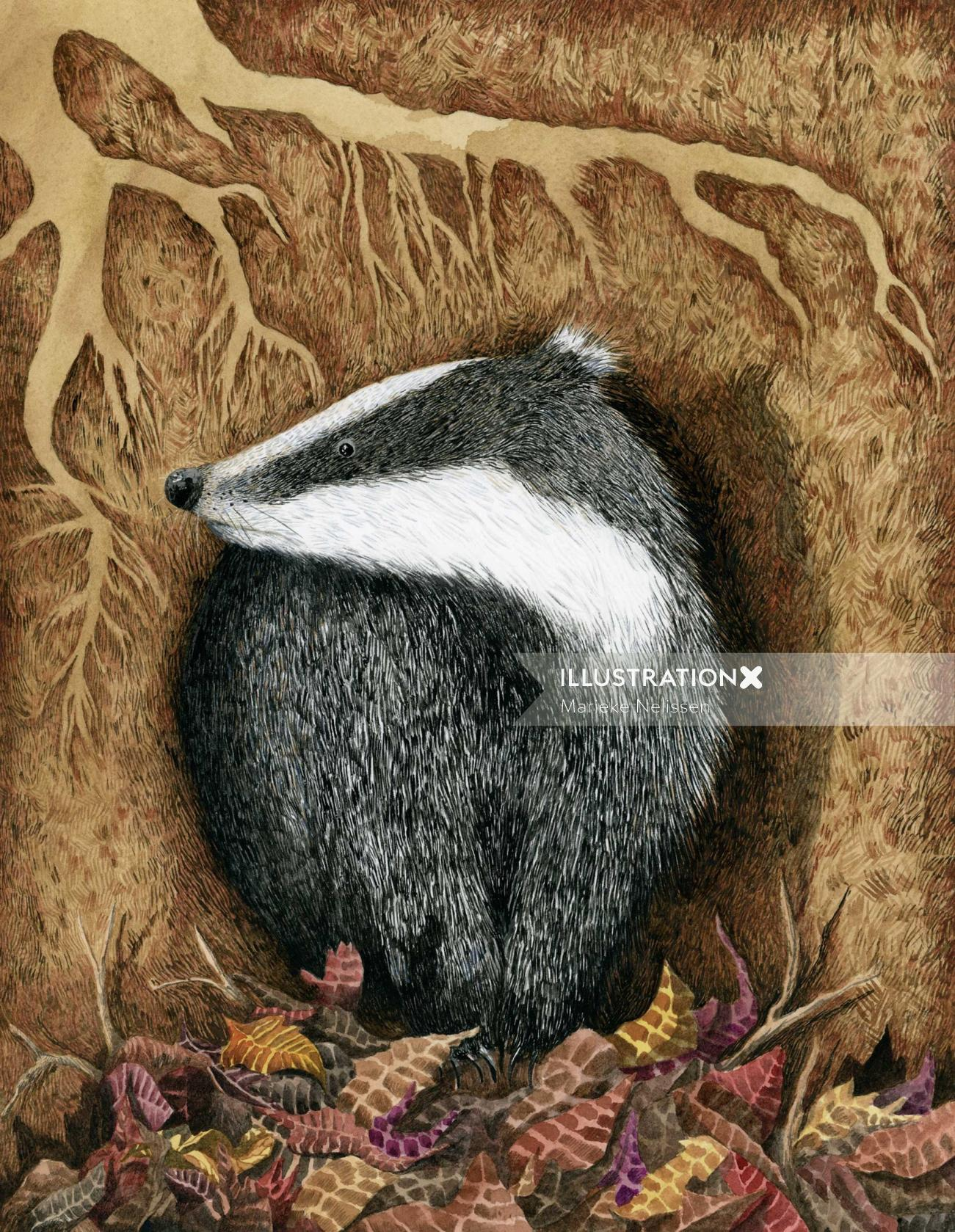 Badger illustration on paper by Marieke Nelissen