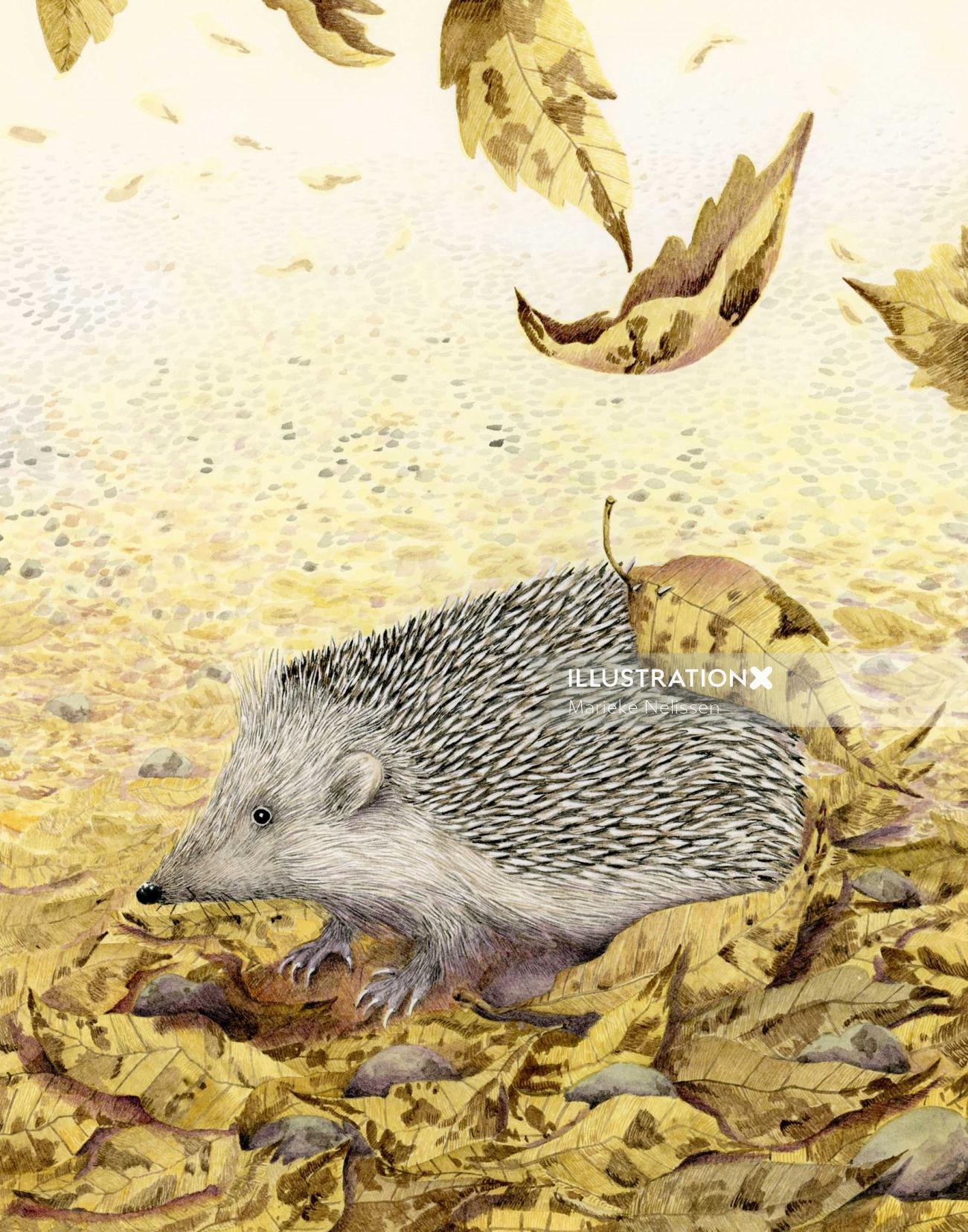 """Hedgehog illustration between autumn leaves """