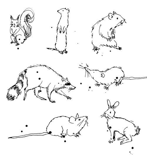 Desenho de linha solto de pequenos animais selvagens.