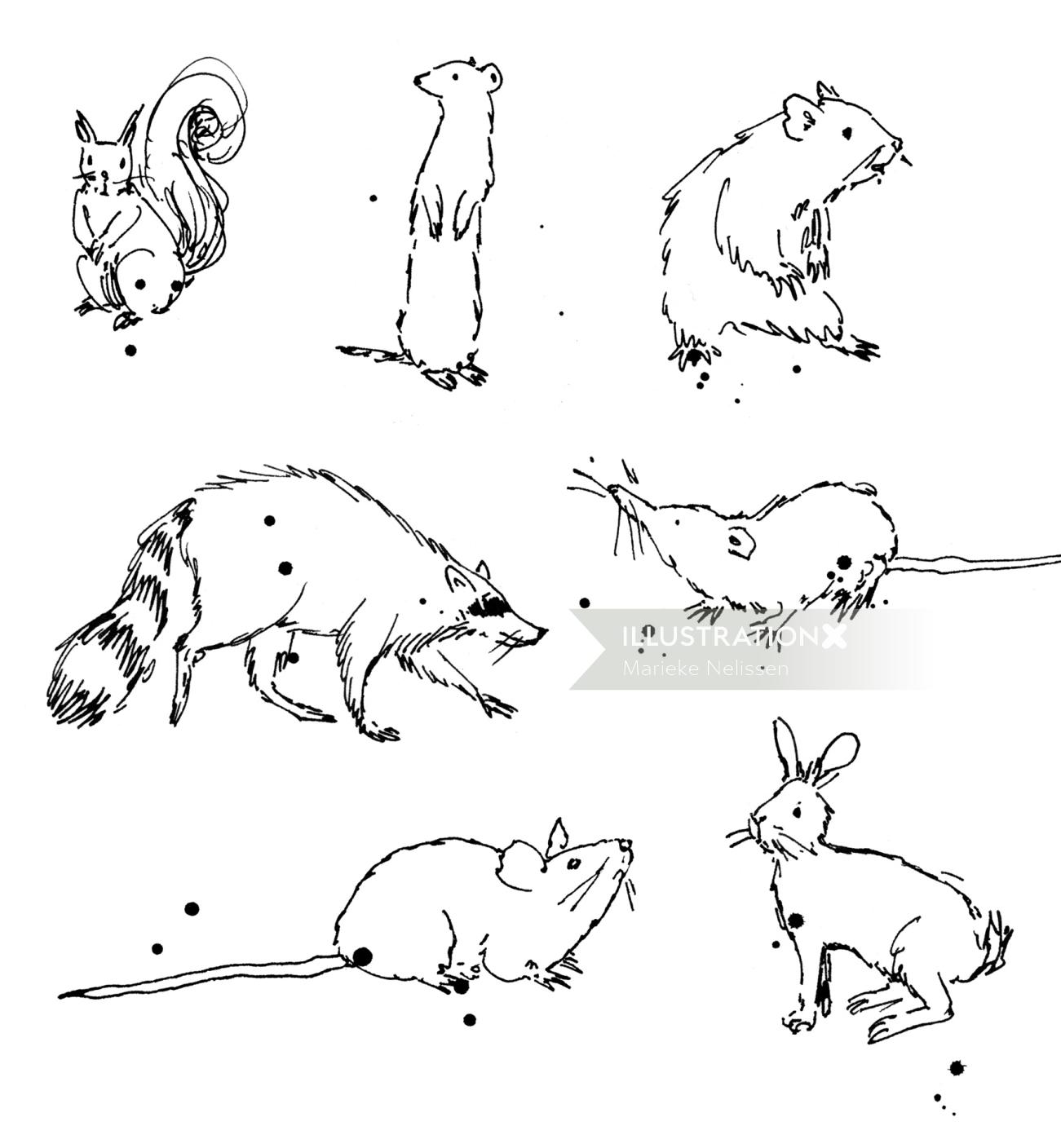 Loose line drawing of small wild animals.