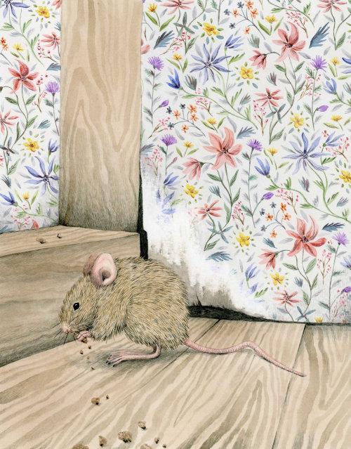 Mouse em casa