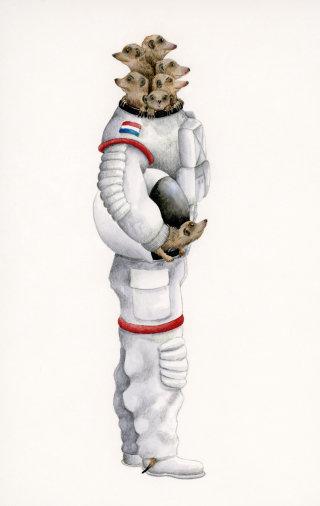 Meerkats in space suit illustration by Marieke Nelissen