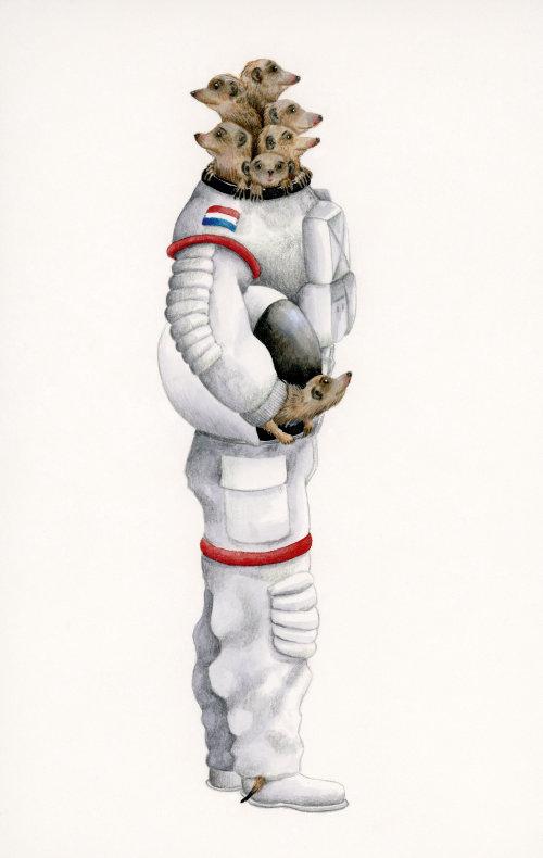 Suricatos na ilustração do traje espacial de Marieke Nelissen
