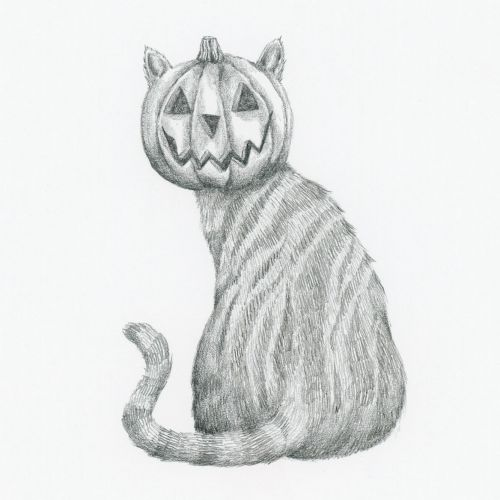 Cat with a pumpkin head