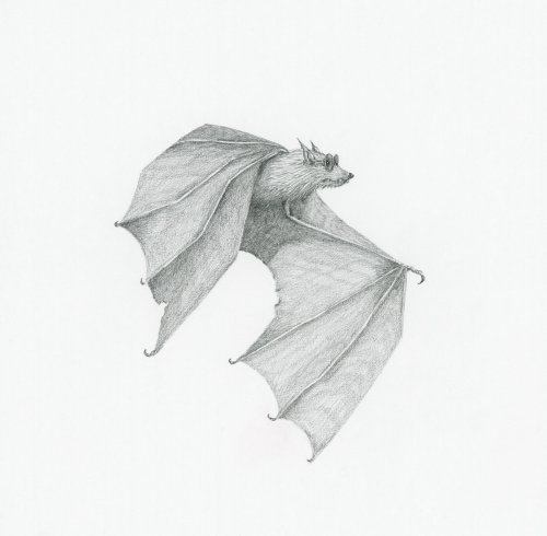 Arte do bastão usando óculos escuros por Marieke Nelissen