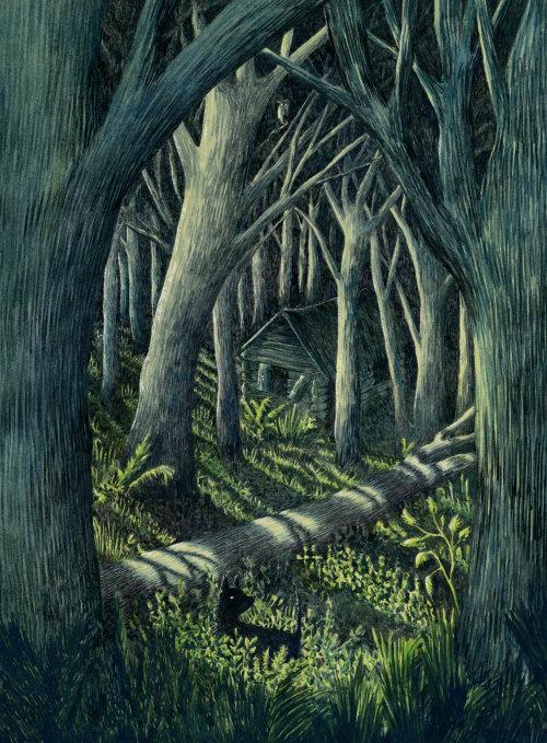 """Floresta """"Toto na floresta escura"""""""