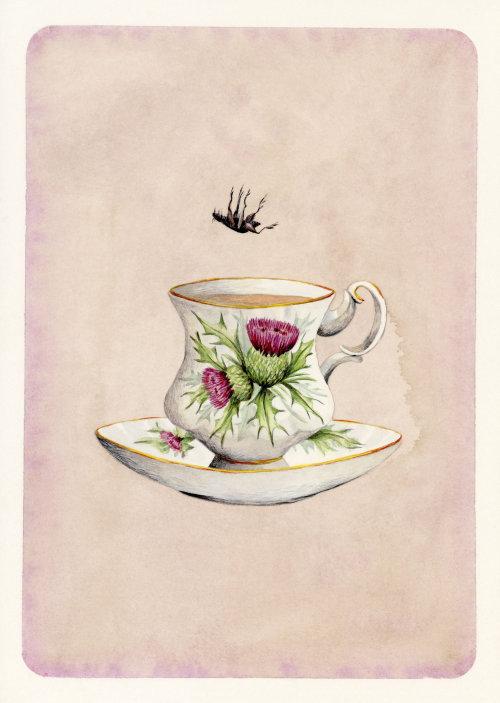 Barata, caindo em uma xícara de café