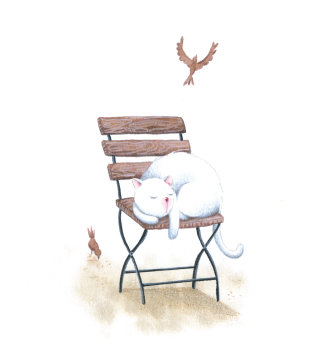 White cat sleeping on a chair