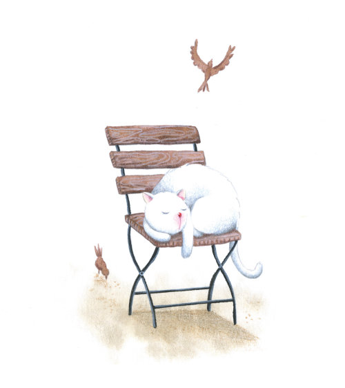 Gato branco dormindo em uma cadeira