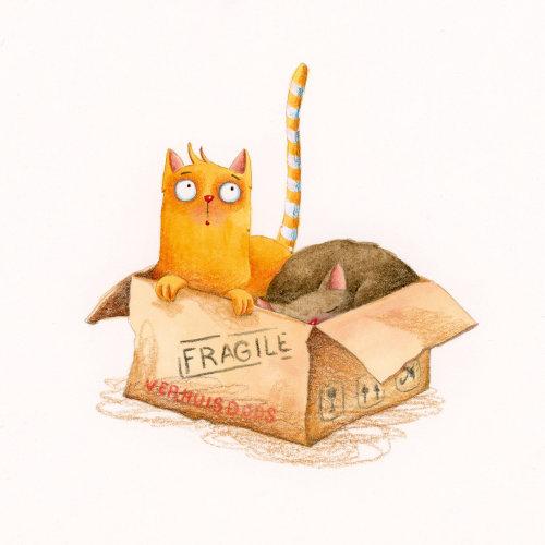 Arte finala de dois gatos em uma caixa por Marieke Nelissen