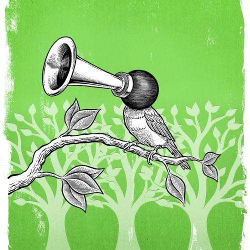 Comic illustration of bird
