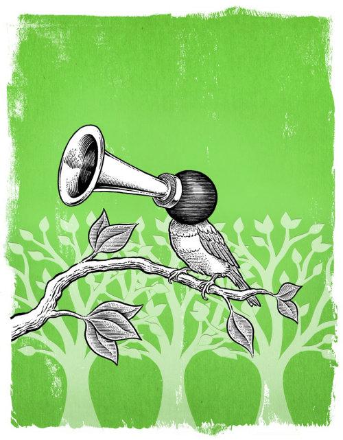 Ilustração em quadrinhos de pássaro