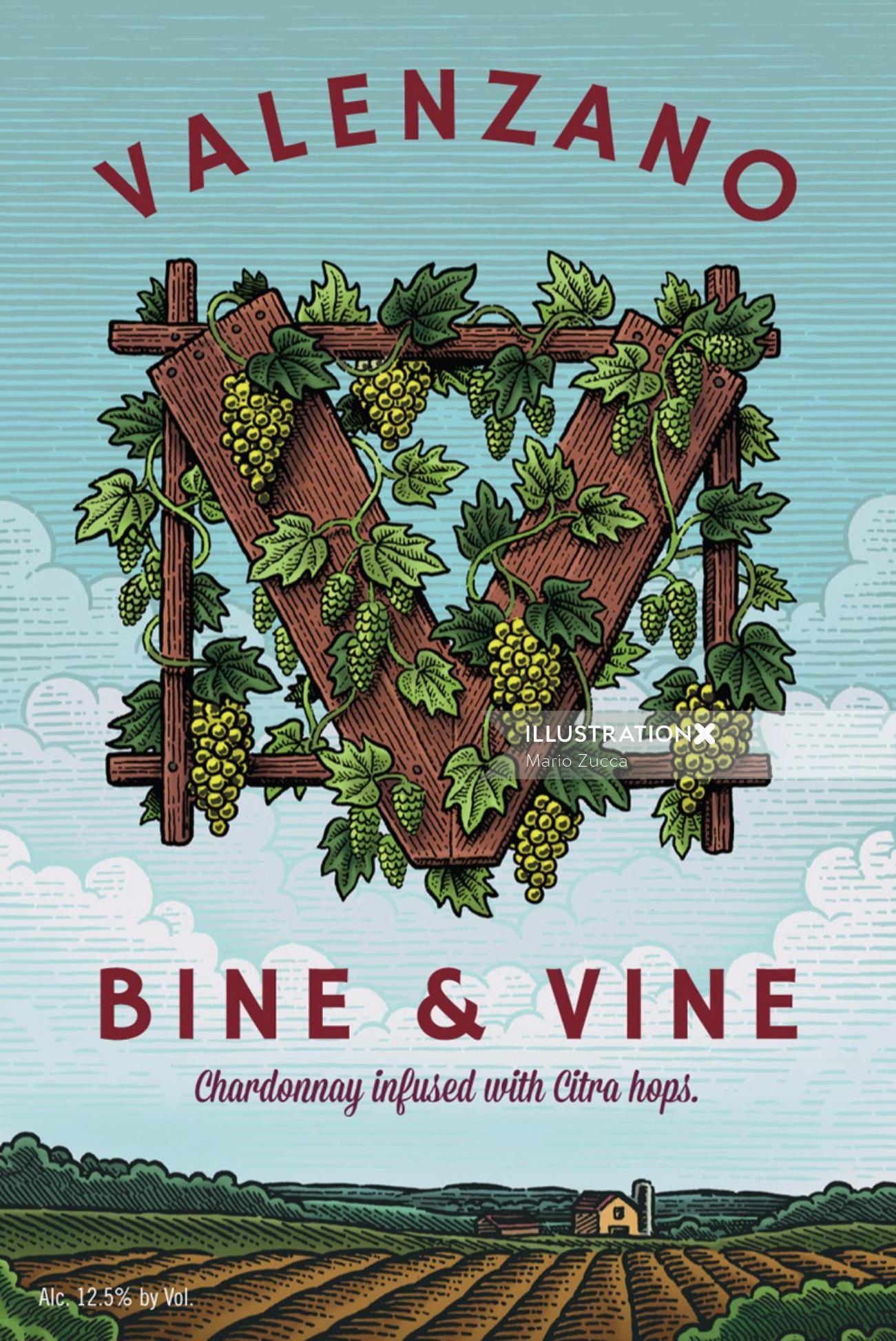 Wine label design by Mario Zucca illustrator