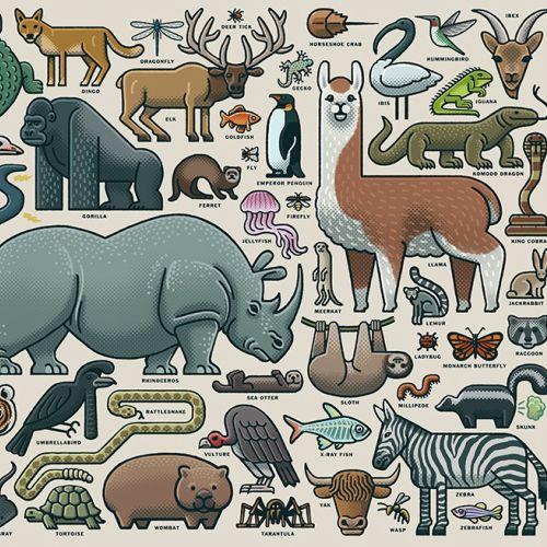 Graphic design of animal collage
