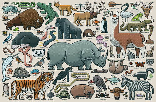 Graphic design of animal collage