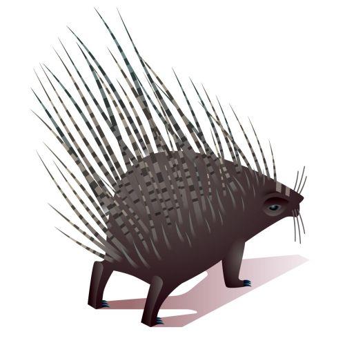 Mark Oliver Animals Illustrator from UK